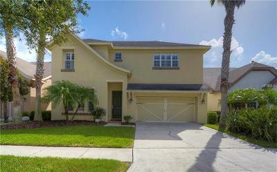 Tampa Single Family Home For Sale: 14607 Mondavi Court