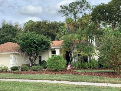 Tampa Single Family Home For Sale: 6212 Greenwich Drive