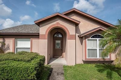 Riverview Single Family Home For Sale: 10417 Salisbury Street