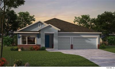 Clermont Single Family Home For Sale: 17661 Serenoa Boulevard