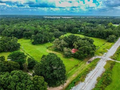 Plant City Residential Lots & Land For Sale: 5904 Paul Buchman Highway