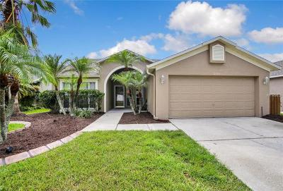 Tampa Single Family Home For Sale: 11303 Clayridge Drive