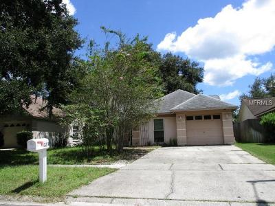 Valrico Single Family Home For Sale: 1023 Hardwood Drive