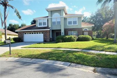 Hillsborough County Single Family Home For Sale: 9508 Larkbunting Drive