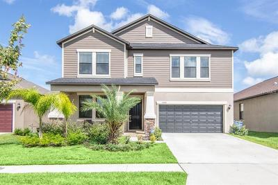 Riverview Single Family Home For Sale: 14046 Tropical Kingbird Way
