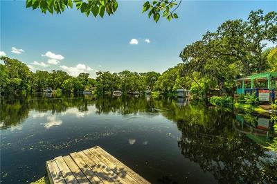 Tampa Single Family Home For Sale: 1502 E Park Circle