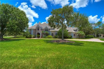 Lutz FL Single Family Home For Sale: $1,499,000