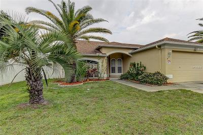 Tampa Single Family Home For Sale: 11434 Georgetown Circle
