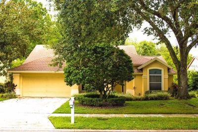Tampa Single Family Home For Sale: 6710 Yardley Way
