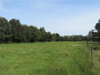 Plant City Residential Lots & Land For Sale: W Reynolds Street