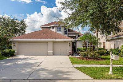 Tampa Single Family Home For Sale: 10125 Deercliff Drive
