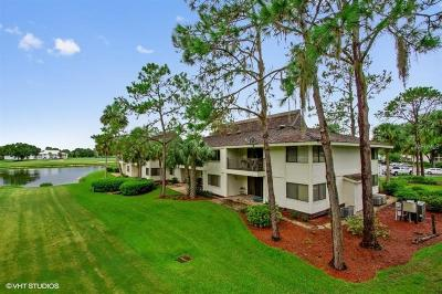 Wesley Chapel Condo For Sale: 29300 Bay Hollow Drive #3242