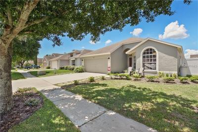 Tampa Single Family Home For Sale: 8616 Fawn Creek Drive