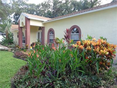 Cleasrwater, Clearwater, Clearwater` Single Family Home For Sale: 5922 Toucan Place