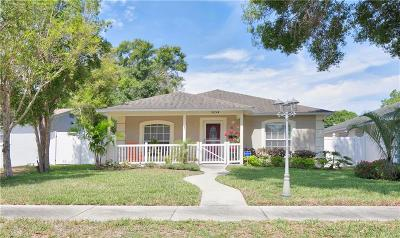 St Petersburg Single Family Home For Sale: 5054 17th Street N