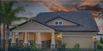 Winter Garden Single Family Home For Sale: 7221 Spring Park Drive
