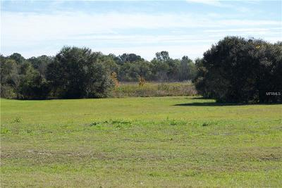 Thonotosassa Residential Lots & Land For Sale: 10633 Broadland Pass
