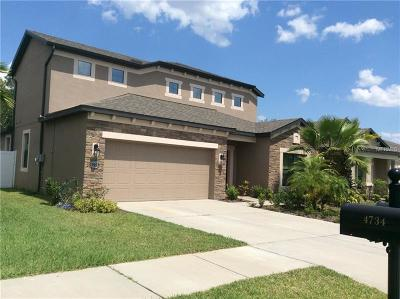Tampa Single Family Home For Sale: 4736 Woods Landing Lane