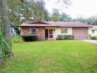 Tampa Single Family Home For Sale: 4613 Serena Drive