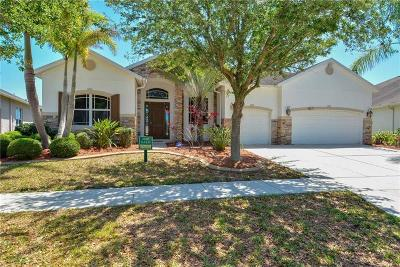 Hernando County, Hillsborough County, Pasco County, Pinellas County Rental For Rent: 6611 Carrington Sky Drive