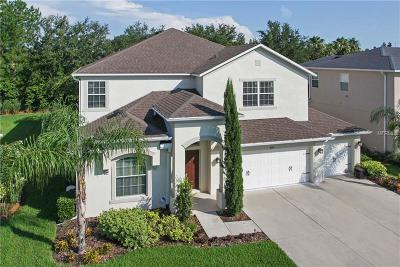 Wesley Chapel Single Family Home For Sale: 4150 Wildstar Circle