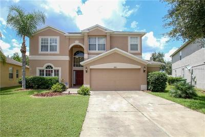 Hernando County, Hillsborough County, Pasco County, Pinellas County Single Family Home For Sale: 3221 Downan Point Drive