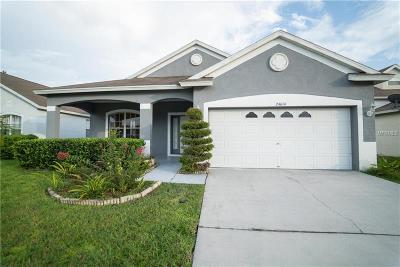 Lutz Single Family Home For Sale: 24614 Siena Drive