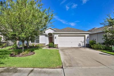 Ruskin Single Family Home For Sale: 1714 Palm Warbler Lane
