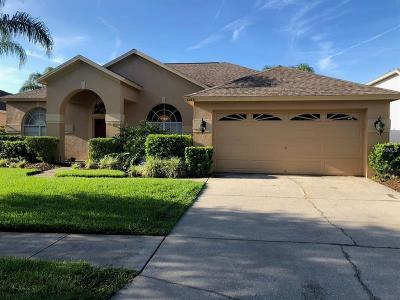Tampa Single Family Home For Sale: 12431 Bristol Commons Circle