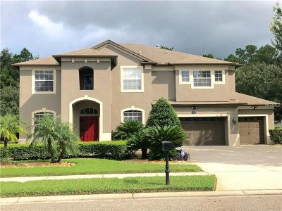 Odessa Single Family Home For Sale: 16152 Ivy Lake Drive