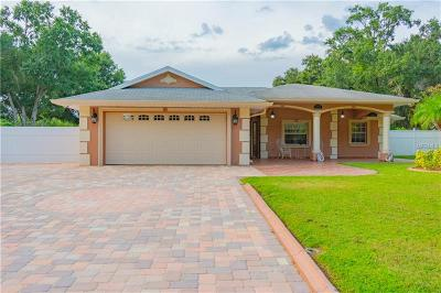 Tampa Single Family Home For Sale: 12717 Barrett Drive