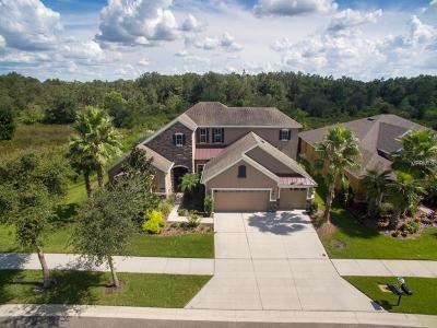 Tampa Single Family Home For Sale: 10519 Mistflower Lane