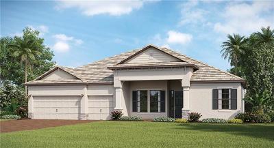 Bradenton Single Family Home For Sale: 17053 Polo Trail