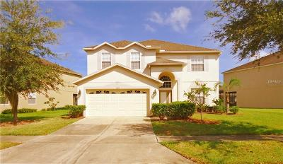 Tampa Single Family Home For Sale: 10616 Liberty Bell Drive