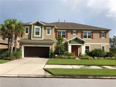 Wesley Chapel Single Family Home For Sale: 26973 Evergreen Chase Drive