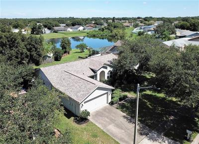 Riverview Single Family Home For Sale: 10623 Foxcrest Way