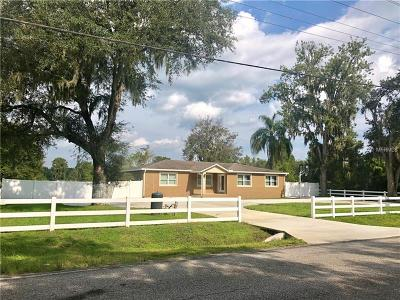 Plant City Single Family Home For Sale: 4110 Cooper Road
