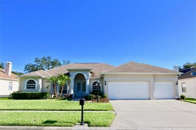 Valrico Single Family Home For Sale: 3908 Smoke Rise Court