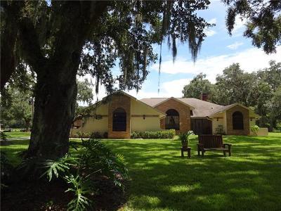 Webster Single Family Home For Sale: 12603 Sr 471