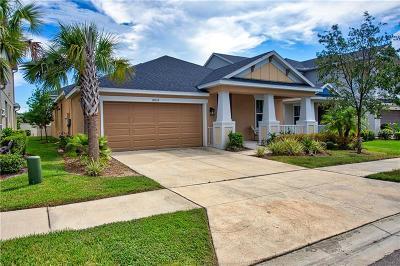 Single Family Home For Sale: 8818 Citrus Palm Drive