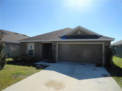 Hernando County, Hillsborough County, Pasco County, Pinellas County Single Family Home For Sale: 30932 Satinleaf Run