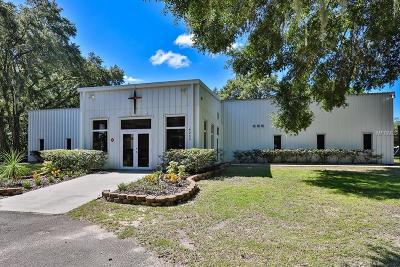 Valrico Commercial For Sale: 4243 E Lumsden Road