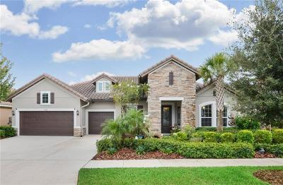 Lithia Single Family Home For Sale: 6008 Watercolor Drive