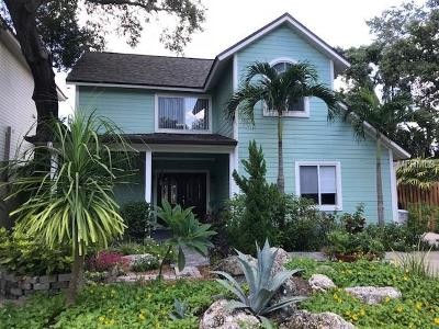 Tampa Single Family Home For Sale: 3011 W Bay View Avenue