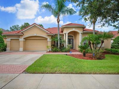 Tampa Single Family Home For Sale: 9821 Tree Tops Lake Road