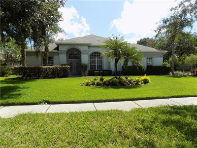 Odessa Single Family Home For Sale: 19113 Beckett Drive