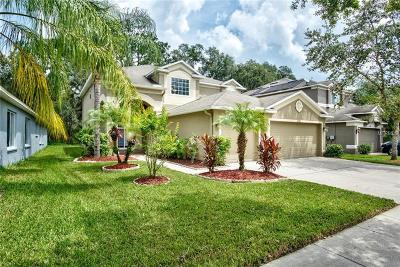 Tampa Single Family Home For Sale: 10502 Lucaya Drive