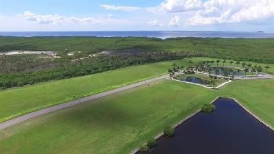 Apollo Beach Residential Lots & Land For Sale: 813 Manns Harbor Drive