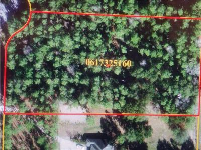 Seffner Residential Lots & Land For Sale: 6907 Peyton Drive