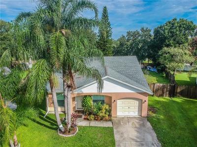 Brandon Single Family Home For Sale: 1404 Woodstork Drive